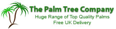 The Palm Tree Company