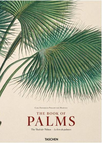 Cover of the Martius Book of Palms