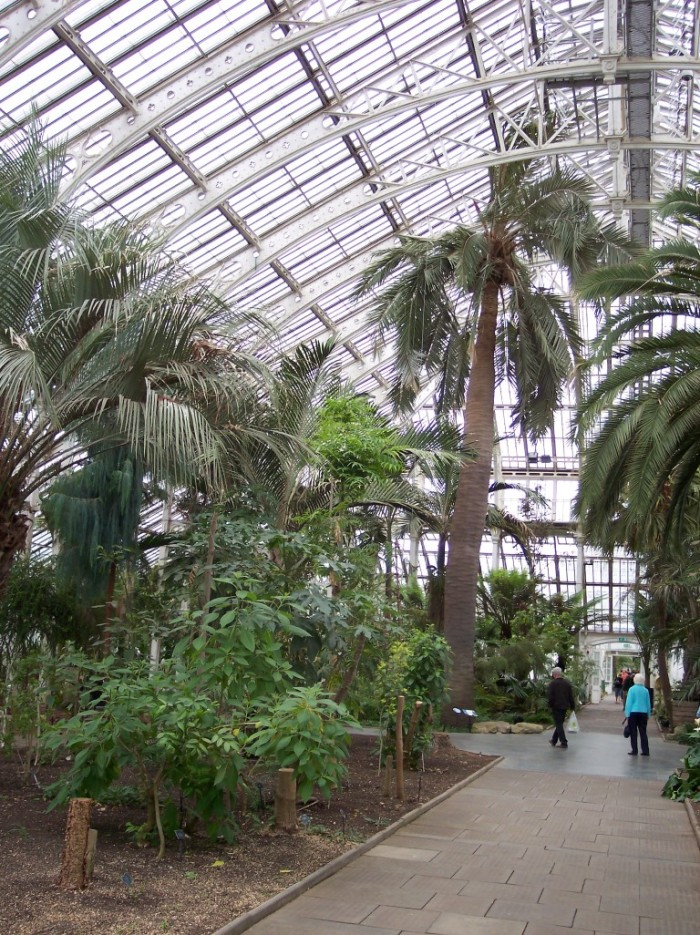 View in the Temperate House