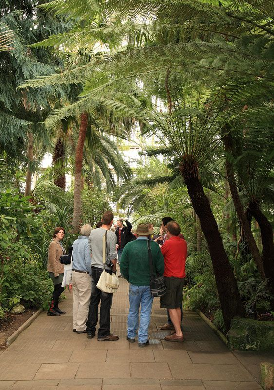 Discussions in the Temperate House
